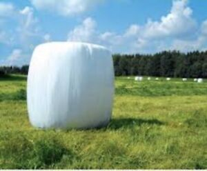 Looking to buy silage or hay