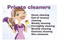 PROFESSIONAL CLEANING AND IRONING