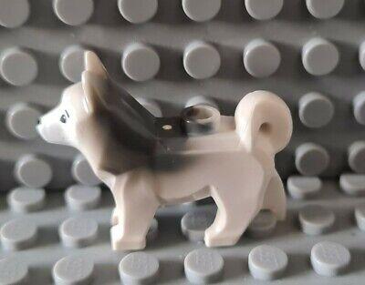 LEGO Husky / Arctic Dog Minifigure. Land Animal / Pet / Zoo / Wild.