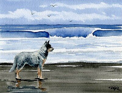 AUSTRALIAN CATTLE DOG Watercolor 11 x 14 Art Print Signed by Artist DJR w/COA