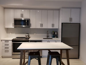 Stunning 2 Bedroom Fully Furnished Condo in Friday Harbour!