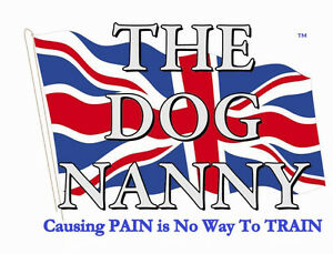 Dog Training Classes with The Dog Nanny
