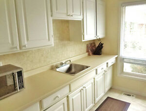 Rent Furnished Three Bedroom Townhouse short or long term NOV 1