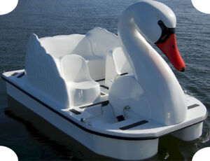 Swan or other paddle boat