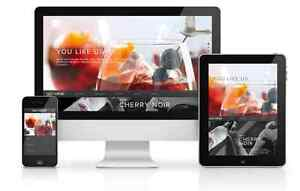 Affordable Mobile Friendly Websites - Online Stores - Local SEO Maroochydore Maroochydore Area Preview