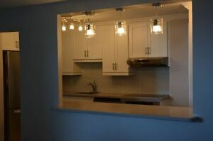 Mississauga GTA Kitchen Renovation, Remodel Experts 647-558-0042
