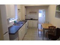 BRIGHT SINGLE WITH DOUBLE BED - Perfect location