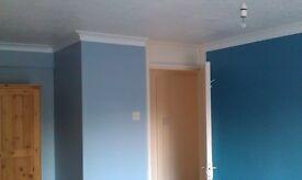 Handyman/plumber/electrician/painter and decorator/garden and maintenance.etc