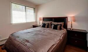One Bedroom Suites Woodlands Manor for Rent - 1825 Woodview... Calgary Alberta image 6
