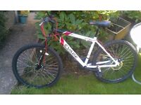 "Boys Mountain Bike 17"" frame"