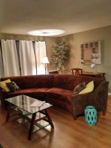 One Bedroom Furnished Condo