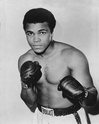 1973 Heavyweight Champion Cassius Clay MUHAMMAD ALI Glossy 8x10 Photo Print