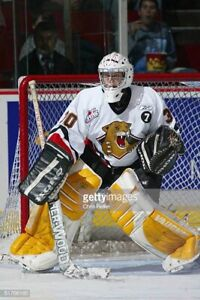 Wanted Prince George Cougars Game Worn Goalie Jersey