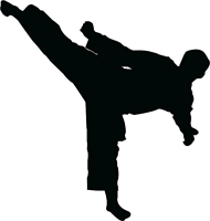 Taekwondo and Acrobatic/Tumbling Group Classes
