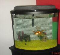 Big aquarium with furniture!