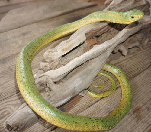 Large Realistic Green Snake Replica - Rubber