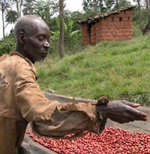 Burundi Coffee Quality