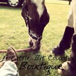 A Little Bit Country Boutique