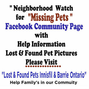 if you lost your pet this is help page please read