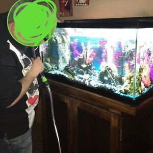 Fish Tank With Stand and all accessories