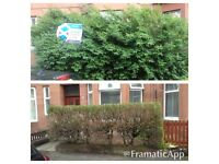 Tree clearance and storm damage - 07795161893