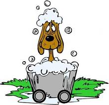 Top Dogz Mobile Grooming & Dog Wash Greenfields Mandurah Area Preview
