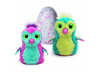 Hatchimals in Teal Colour