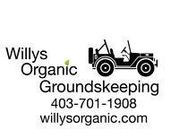 Organic Groundskeeping and Lawn Renovation   willysorganic.com