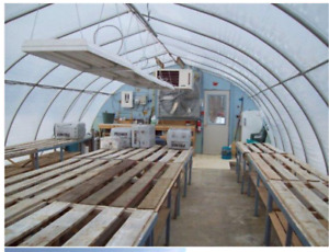 For sale. Commercial Size Greenhouse to be moved.