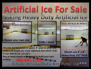 Artificial Ice Hockey Surface