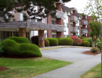 Full Time Maintenance at Multi-Housing Complex