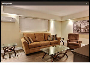 Available August 15 : Furnished Executive Condo Near U of M