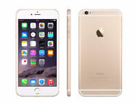 LOST: iPhone 6