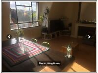 Double room available in a fully refurbished flat - LGBT Friendly