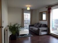SUPER QUIET & STUNNING 9th FLOOR PENTHOUSE APARTMENTMENT LONDON ROAD £1250 per month