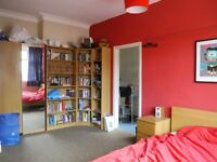"Large 1 bedroom flat close to city centre. ""Ultrafast"" wi-fi included. No fees to pay."