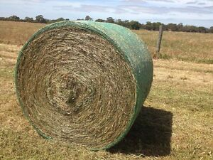 Hay for sale Strathalbyn Alexandrina Area Preview
