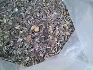 Sunflower  seeds and nuts