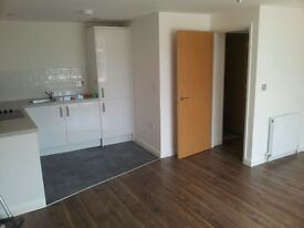 Two Luxury one bedroom flats available, 200m from Chelmsford main Line station
