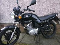 Yamaha YBR125 - Full Year's MOT