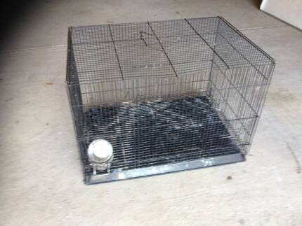 BIrd cage with stainless food and water dishes