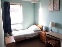 Comfortable Spacious Single Bedroom