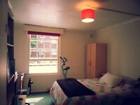 Fantastic Double Bed, next door Pimlico Stn. Zone 1.