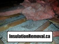 INSULATION REMOVAL - 110% Price Guarantee!
