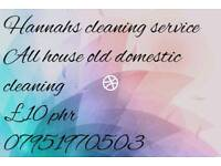 Local private cleaner