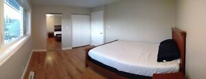 Room For Rent All Incl - Fort McMurray