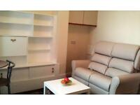 Fully refurbished luxury furnished 1 bed flat, quiet location, patio. Suit professionals.