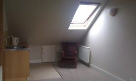Large loft studio in leafy East Finchley, suit quiet professional - moments from Tube, park & shops