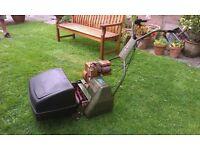 Webb Self Propelled Petrol Lawnmower