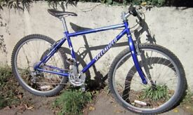 "Specialized Hard Rock Comp mountain bike....16"" frame"